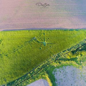 Venton Farm, Nr Marazion, Cornwall, UK Reported 24th May (Cornwall nr. 1)