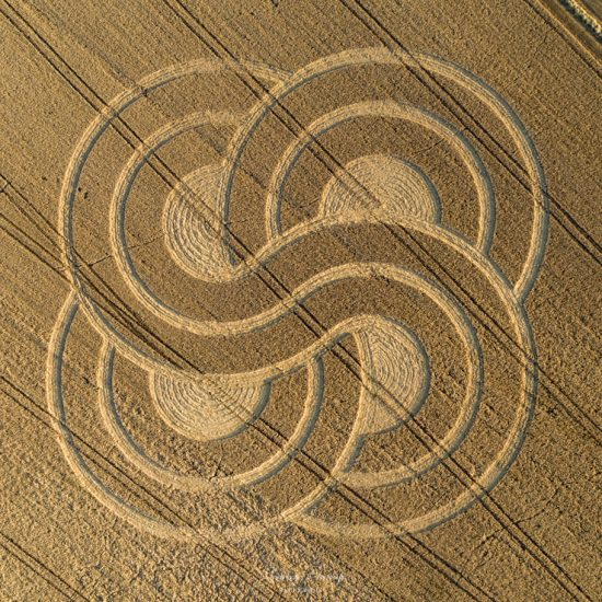 Roundway, Nr Devizes, Wiltshire. Reported 13th September. DJI_0787-3